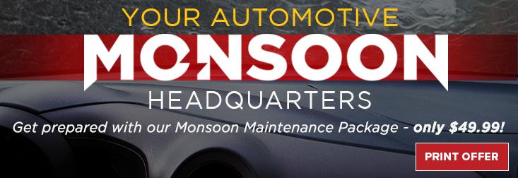 Sharp - Monsoon Maintenance Package